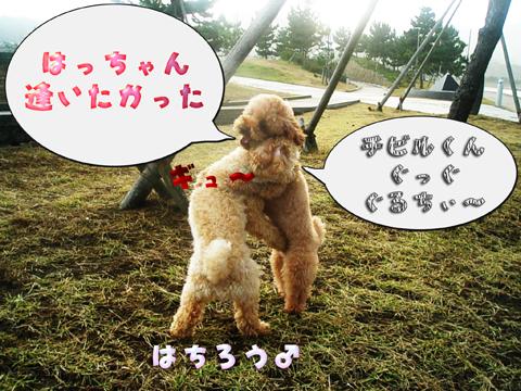 04_20101106221129.jpg