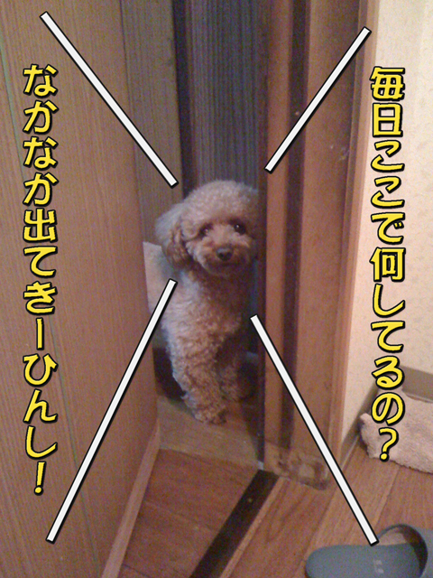 06_20101006231213.jpg