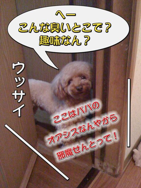 07_20101006231213.jpg