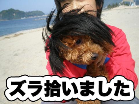 12_20100831215527.jpg
