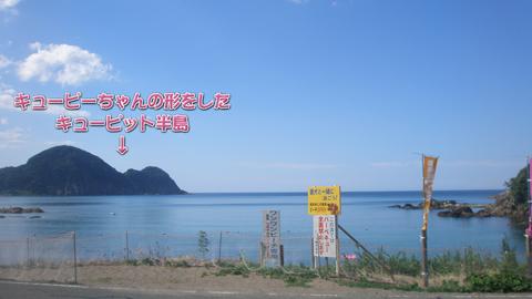 15_20100806181656.jpg