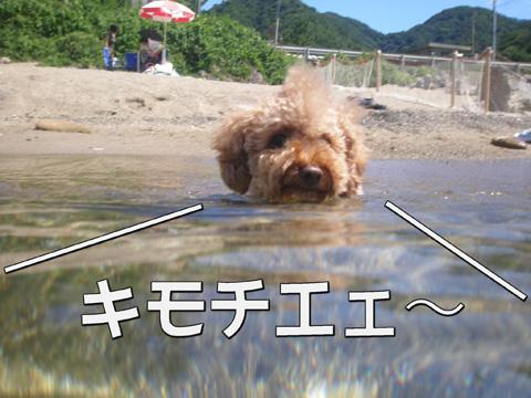 30_20100806181524.jpg