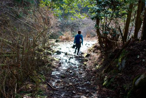 比叡山沢の道