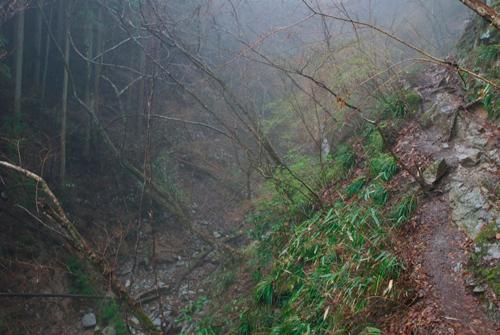 13雨の金剛山