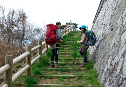 金剛山緑の階段