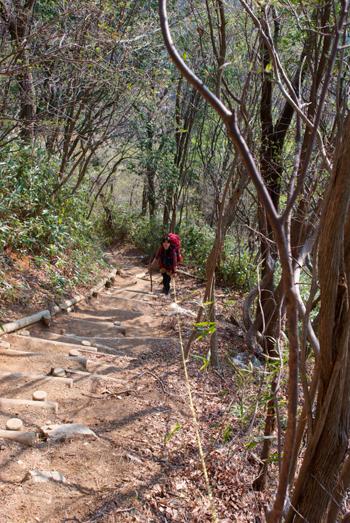 葛城山への階段