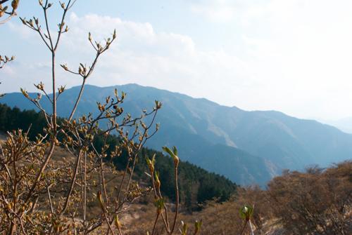 葛城さんから金剛山を見る