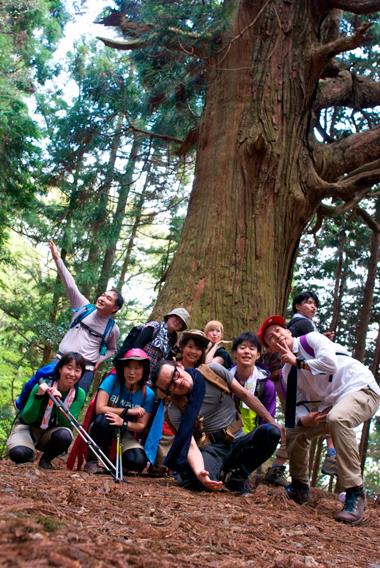 07-2蓬莱山天狗杉