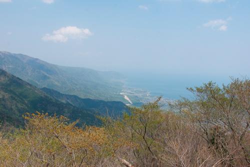 08蓬莱山登山道後半景観