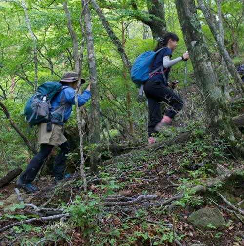 3-2木の根登山道ー大峰