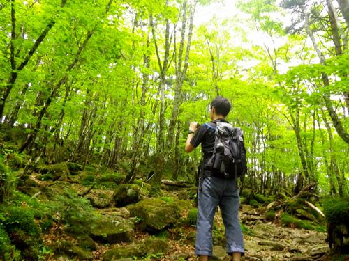 6-3弁天の森