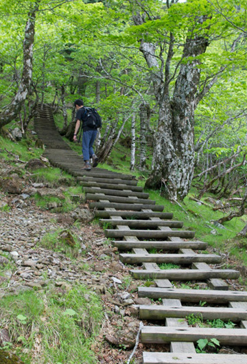 8-1登りの階段