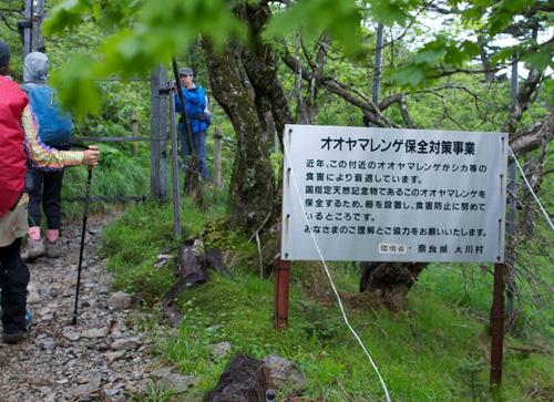 12-4八経ヶ岳山4頂へ