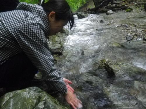 14-6八経ヶ岳下山