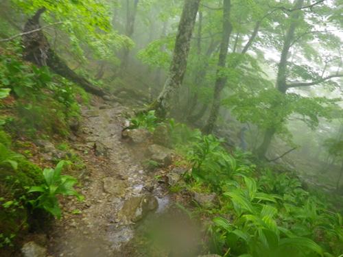 14-3八経ヶ岳下山