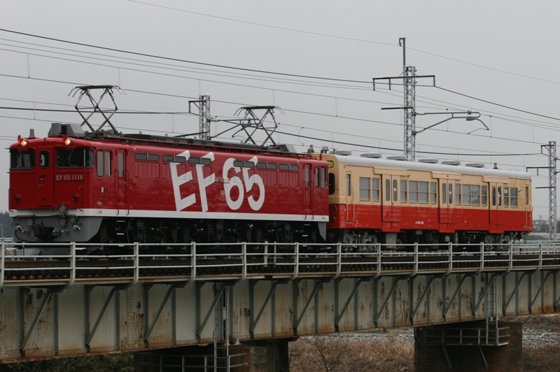 kamasu 072