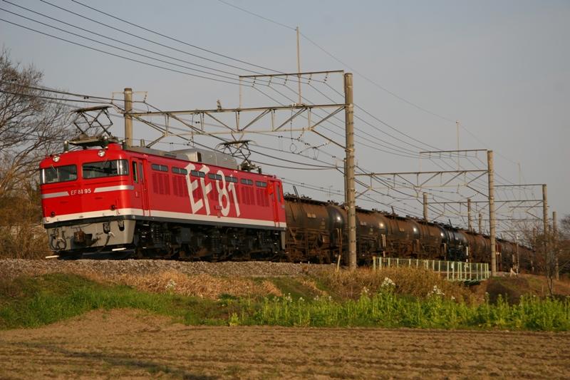 フキギョウ 006