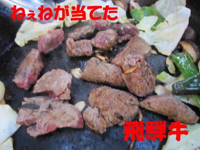 朝霧・春 146a