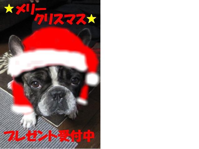 snap_eikiti0405_20091259144.jpg