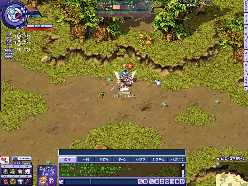 TWCI_2010_6_18_15_48_15.jpg