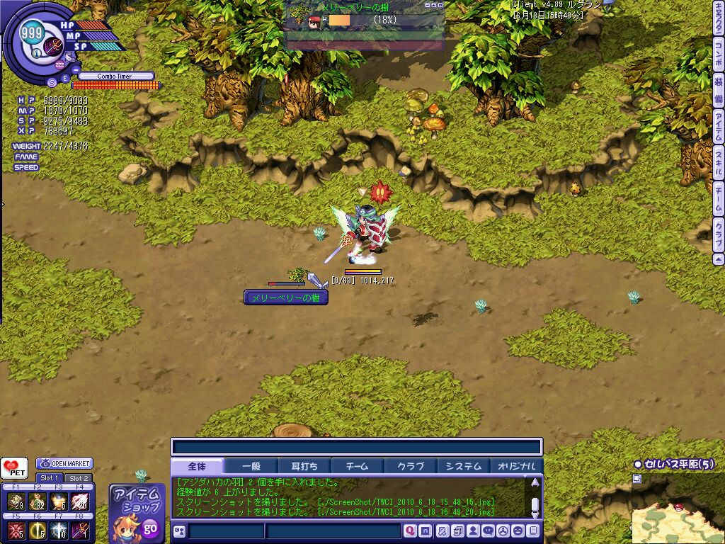 TWCI_2010_6_18_15_48_21.jpg