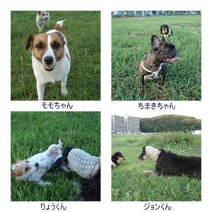 縺雁暑驕費シ胆convert_20100819123618