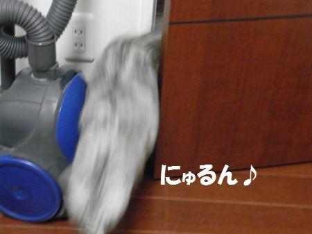 20100316/1