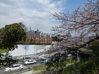 東京国立近代と桜4.6