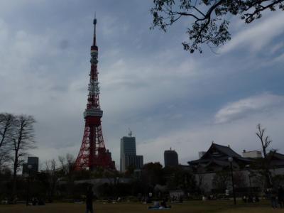 東京タワーと増上寺4.7