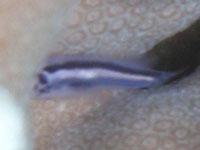 20100331_3.jpg