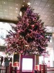「クリスマスツリー2009」岩田屋前(福岡市)