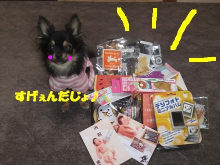 動画 004