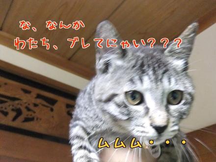 fwI9b.jpg