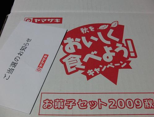 2009aki2.jpg