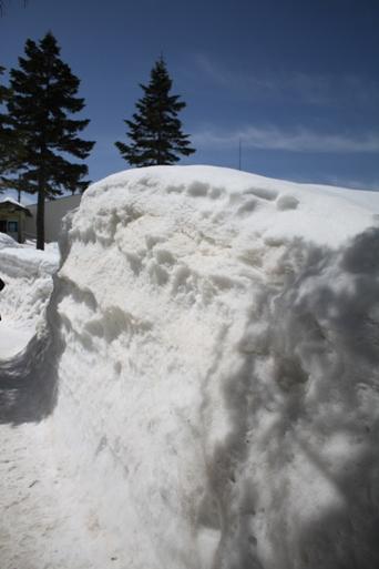 感激!雪の壁の中を歩く