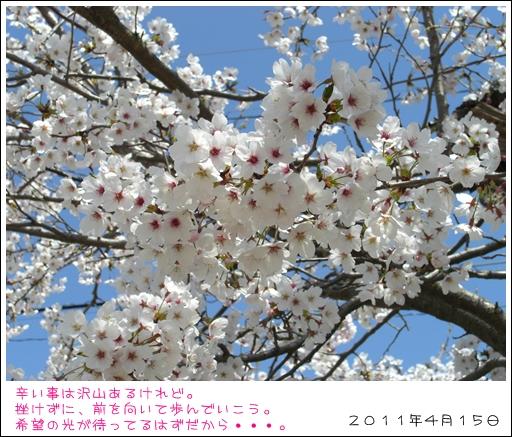 005_20110415132107.jpg