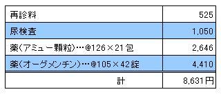 MARIN 20091219診療明細書