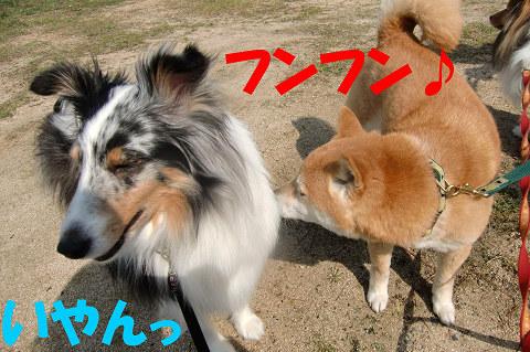 MARIN&むぎちゃん