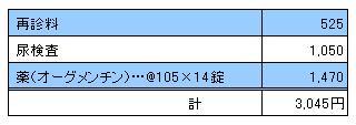 MARIN 20100515診療明細書