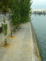 2110 2010 PARIS (246)