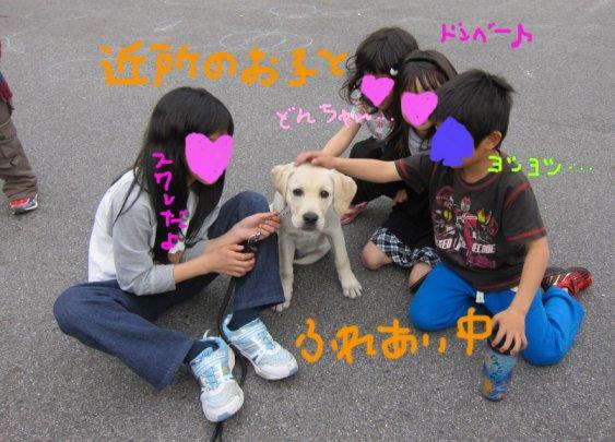 コピー ~ パピー2010 054