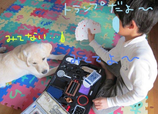 コピー ~ パピー2010 012