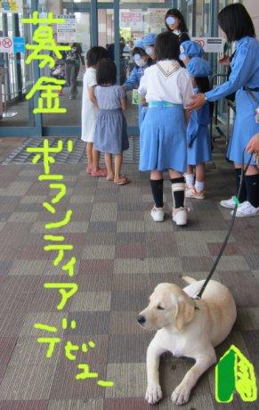 コピー ~ パピー2010 008