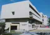 パピー2010 068