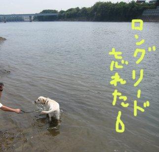 コピー ~ パピー2010 090