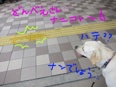 040 - コピー