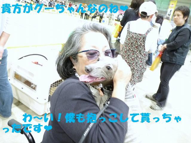 rai16_20100524150446.jpg