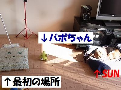 RIMG3119.jpg
