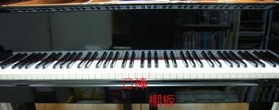 RIMG1346t.jpg