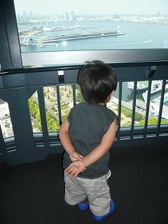 甥っ子ちゃん、景色見る